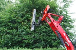 Frisdal hegnsklipper - klipning af højt træ